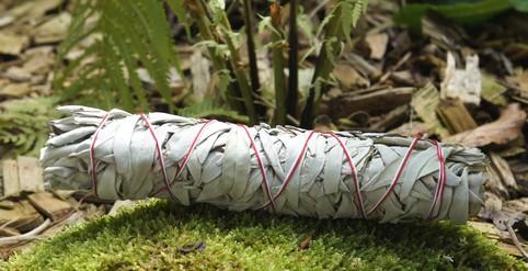 Weißer Salbei lose zum Räuchern   Räucherwerk