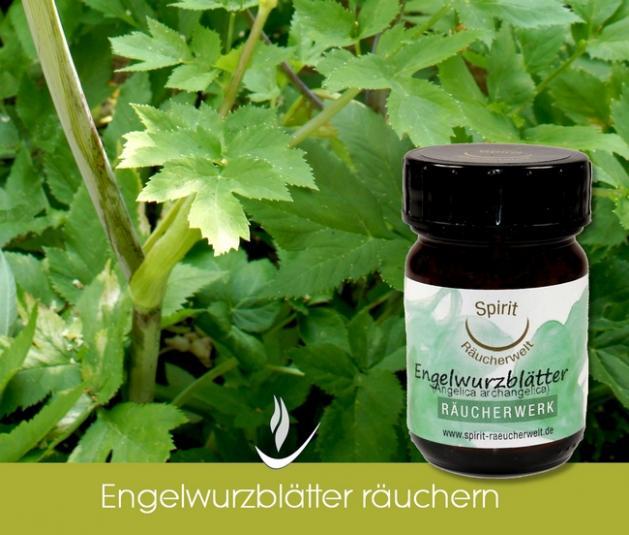 Angelika | Engelwurz Blätter bio - heimisches Räucherwerk