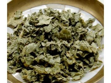 Frauenmantelkraut bio - heimisches Räucherwerk