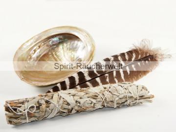 Muschelset klein mit Räucherbündel und Feder